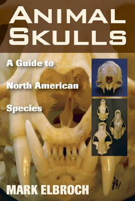 Animal Skulls By Elbroch, Mark